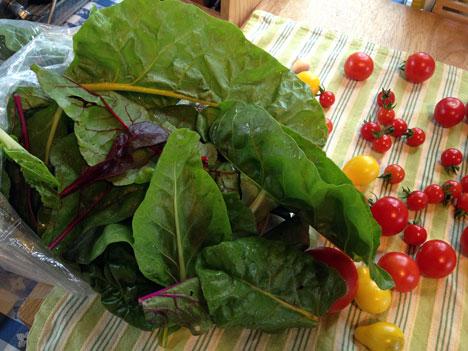 veggies08_22