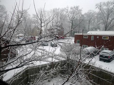 snowD11_25