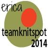 TeamKnitspot2014erica
