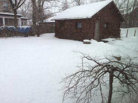 snowBackYard02_20