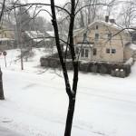 snowFlyingC03_22