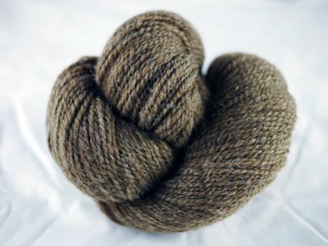 kelp-yarn web