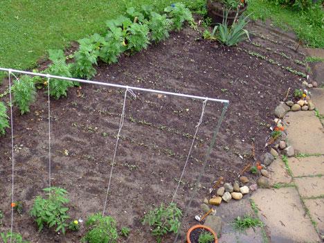 gardenSeedBed06_19