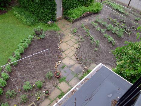gardenWet06_19