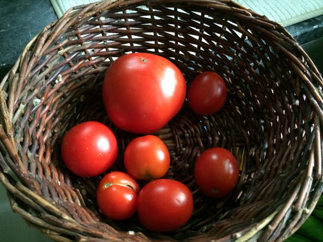 cookingTomatoes07_28