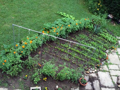 gardenJulyA07_09