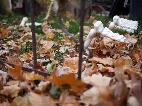 halloweenDayT10_31