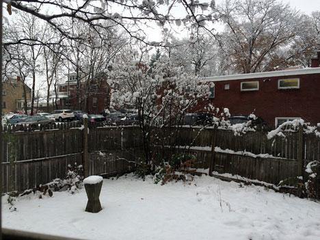 snowScape11_19