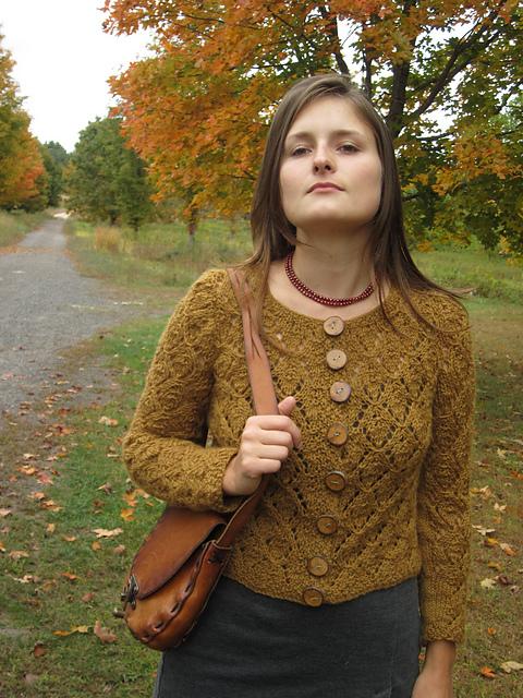 Pinsandstrings Autumn Leaves on Ravelry