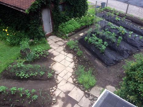 garden06_25
