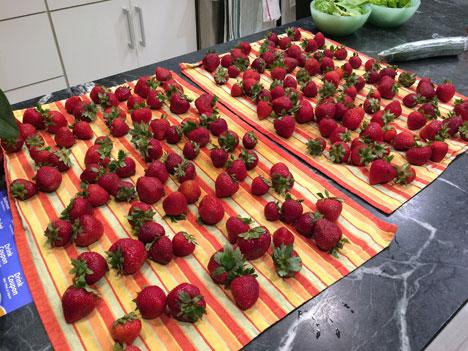 strawberriesSaturday07_29