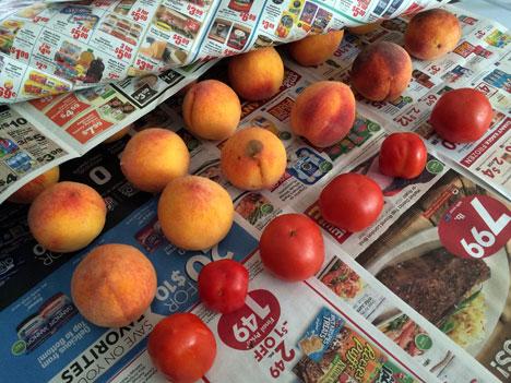 peachesTomatoes08_09