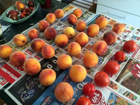 peachesTomatoesA08_09