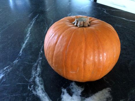 pumpkin11_17