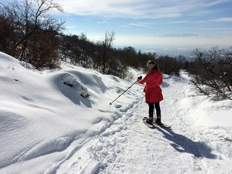 snowshoeingC01_29