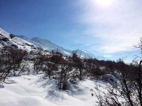 snowshoeingD01_29