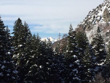 snowshoeingG01_29