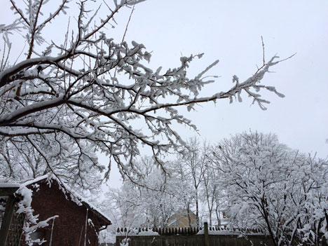 snowDay02_28