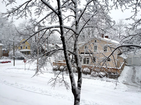 snowDayA02_28