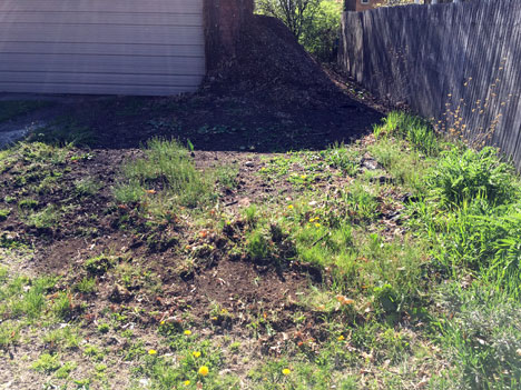 new-bed-weeds