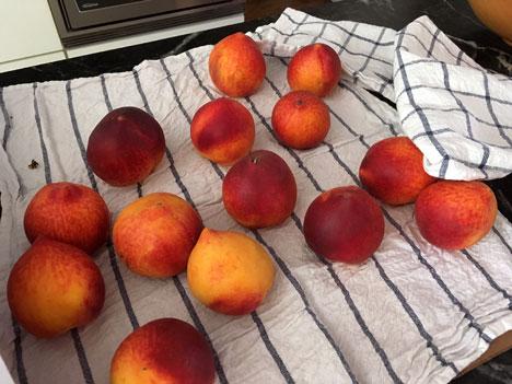 peaches06_17