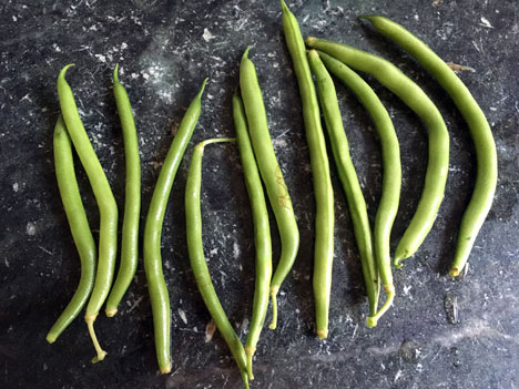 greenBeans08_12
