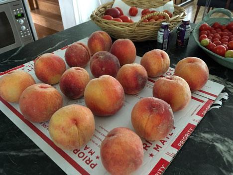 peaches08_12