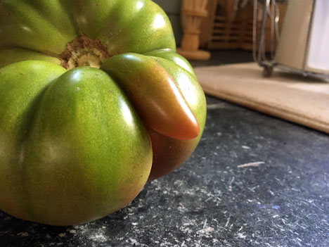 tomatoFlasher08_12