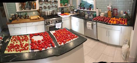 tomatoesWashed08_23