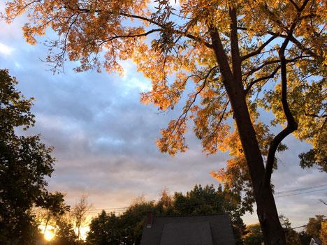 sunset11_06